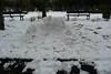 Snowmen in the Park,Victoria Park,Aberdeen_mar 18_134 (Alan Longmuir.) Tags: watsonstreet victoriapark grampian aberdeen winter snow snowmeninthepark snowmen