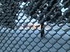 Behind The Fence (henkeiP) Tags: fence behind ip kvarnsveden snow tree fotball goal lights field sports winter stängsel mål fotboll fotbollsplan fotballfield cold snö träd outside