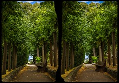 Glimpses of Eternity 3-D / CrossEye / Stereoscopy / HDR / Raw (Stereotron) Tags: sachsenanhalt saxonyanhalt ostfalen harz mountains gebirge ostfalia hardt hart hercynia harzgau quietearth park garden bench outdoor europe germany crosseye crosseyed crossview xview cross eye pair freeview sidebyside sbs kreuzblick 3d 3dphoto 3dstereo 3rddimension spatial stereo stereo3d stereophoto stereophotography stereoscopic stereoscopy stereotron threedimensional stereoview stereophotomaker stereophotograph 3dpicture 3dglasses 3dimage twin canon eos 550d yongnuo radio transmitter remote control synchron kitlens 1855mm tonemapping hdr hdri raw