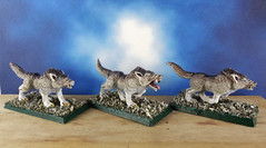 Arctic-Dire-Winter-Wolf-Wolfpack-Painted-Miniature-01 (Dead Bard Miniatures) Tags: dd dungeons dragons reaper ralpartha grenadier warhammer wotc chainmail pathfinder painted miniature mini