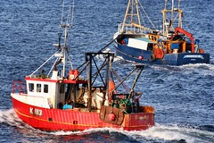 Awa' to sea (calzer) Tags: august canon pair prawns catch sea boats fishing moray lossiemouth majestic maid stronsay