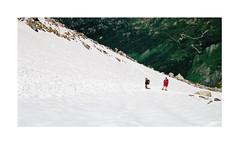 Souvenir... vers le refuge Albert 1er (Yvan LEMEUR) Tags: refugealbert1er letour névé neige randonnée hautesavoie hautemontagne mountain montagne alpes chamonix france extérieur valléedechamonix
