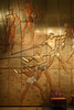 P-00464-No-065_rt (Steve Lippitt) Tags: architecture art bronzes museums oceanlinersspeedstyle victoriaalbertmuseum architectural artistry bronze bronzesculpture building edifice edifices fineart metalsculpture sculpture statuary statue statues structures london england unitedkingdom camera:make=fujifilm camera:model=xt2 geo:lon=017111166666667 geo:country=unitedkingdom geo:state=england exif:lens=xf35mmf2rwr geo:city=london geo:location=vamuseumcromwellrdknightsbridgesw72rl exif:model=xt2 exif:isospeed=3200 exif:make=fujifilm exif:focallength=35mm geo:lat=51497221666667 exif:aperture=ƒ32