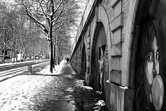 Under the snowy trees (pascalcolin1) Tags: paris13 hommes men enfants children neige snow enneigé snowy arbres trees photoderue streetview urbanarte noiretblanc blackandwhite photopascalcolin 50mm canon50mm canon
