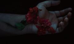 Turnme into phantoms (Ivannramirezphoto) Tags: roses veins fineart emocional emotional conceptual photography feel feelings moody blue analog