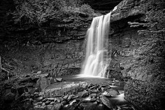 US-NY Tannersville - Kaaterskills Fall 2017-05-28 (N-Blueion) Tags: