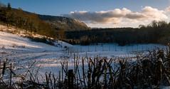 Bois du Jura (Jeffray12) Tags: cascadesduherisson foret forêt bois neige riviere herisson