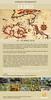 Viaggio a Lesbo - Aprile 2018 (Nicola Destefano) Tags: viaggiofotografico viaggio travel lesbo lesvos lesbos fotografia fotografianaturalistica rettili anfibi uccelli invertebrati fioriture orchidaceae nicoladestefano aprile 2018 isola grecia vanguard vanguardpro vanguardworld