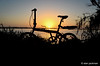 Sunrise Silhouette, Lake Hancock at Circle B Bar Reserve (alan jackman) Tags: sunrise over lake hancock circle b bar reserve alanjackman jackmanonjazz bicycle silhouette lakehancock nikon d7000 nikkor 1855mm florida lakeland foldingbike folding bike velo melonslice melon slice