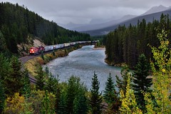 I hear the train a comin'... (Banff National Park) (thor_mark ) Tags: albertaprovincialhighwayno1a alongbanksofbowriver atmorantscurve ballrange banffnationalpark banfflakelouisecorearea beginningoftrain bowriver bowvalleyparkway canadianpacificrailway canadianpacificrailwaytrack canadianrockies capturenx2edited cloudsaroundmountains colorefexpro coppermountain day4 engine evergreens freighttrain hillsideoftrees hillsides landscape locomotive longstretchoftrain lookingsse lowclouds mostlycloudy mountainvalley mountains mountainsindistance mountainsoffindistance nature nikond800e outside overcast portfolio project365 railline railroad railroadtracks railwaytracks river riverbank rockymountains southerncontinentalranges stormmountain train traincars trainengine traingoingby trainlocomotive traintracks traininmotion trees triptoalbertaandbritishcolumbia alberta canada