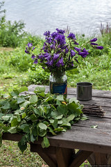 Still life with bellflowers, steel cup and birch broom (Denis Vahrushev) Tags: russia southernural ural aquamarine attractive bank beautiful bellflower besom birch blue broom brown campanula coast cold cup day dishes filllight flower furniture grass green grey july lake landscape lowcontrast melancholy morning nature outdoor park plant pond pretty purple recreation rest season serenity stilllife summer table tree turquoise vacation violet water nizhniyufaley chelyabinskayaoblast ru