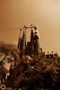 Sagrada Família (NadzNidzPhotography) Tags: nadznidzphotography 7dwf bwandsepianomonochromeincolor blackandwhite blackandwhitephotography black sepia sagradafamilia architectural architecture basilica