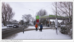 Dog Walkers in the snow (Paul Simpson Photography) Tags: paulsimpsonphotography nature snow snowfall winter white dogwalking dogging walking scunthorpe fuelstation petrolstation sonya77 imageof imagesof photoof photosof cold weather naturalworld transport february2018 chilly whiteout cars england uk lincolnshiresnow snowscenes scenic viewsof