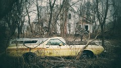 long term parking.... (BillsExplorations) Tags: car abandonedcar abandoned decay ruraldecay forgotten rust parked ruins abandonedillinois old trees yellow ranchero