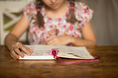 El placer de los cuadernos bonitos (Nathalie Le Bris) Tags: retrato portrait libro book mano hand 52anónimos