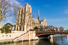 Notre Dame de Paris (arnaud_martinez) Tags: blue city cityscape france illuminated light napoleon notredame outdoors paris seine sky street arch architecture bridge building bulbs christmas famous flow iron island lady landmark lighthouse monument old river show skyline tower traffic travel urban