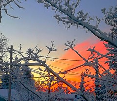 Some will see a wonderful sunrise and some will see a dirty window, lol. (evakongshavn) Tags: sunrise colours colors colorful colourful goodmorningworld goodmorning skyandclouds sky clouds new light winter white snow myview outside window cloud pastel pink purple orange 7dwf