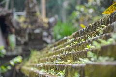 ... the wall ... (wolli s) Tags: goagajah sukawati bali indonesien id nikon d7100