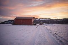 Pastel winter colors (Helena Normark) Tags: redbarn winter pastel snow leinstrand leinstrandmarka trondheim sørtrøndelag norway norge sonyalpha7 a7 35mm lensbaby burnside35 lensbabyburnside35 lensbabylove seeinanewway