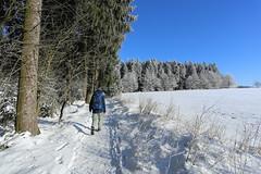 IMG_0227 (rudolf.brinkmoeller) Tags: eifel wandern natur eifelsteig hohesvenn