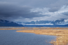 The Bird Sanctuary Under Storm Couds (Kristian Francke) Tags: landscape water outdoors nature natural naturephotography bc canada mountain mountains pentax marsh