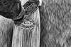 Riding (kceuppens) Tags: longboard nikon d810 nikkor 24120 black white bw wit zwart zwartwit blackandwhite skate shoe schoen camper arbor street straat nikond810 nikkor24120f4vr wide buiten outdoors skating movement beweging