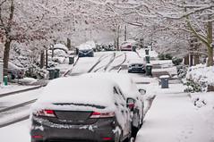 Snow around us