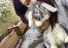 First snow for my little love (gosselinclara) Tags: white blanc fourrure fur girl home south sud france var neige snow rabbit bunny lapin amour love