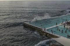 _RJS6511 (rjsnyc2) Tags: 2018 australia beach bondibeach d810 day nikon nikond850 ocean richardsilver richardsilverphoto richardsilverphotography sydney travel travelphotographer travelphotography travelphotographywinter city