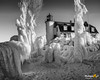 Frozen Trees at Point Betsie Lighthouse (Michigan Nut) Tags: landscape winter frozen ice icicles lakemichigan michigan nature pointbetsielighthouse snow landmark greatlakes freezing frozenlighthouse blackandwhite nikond850 nikon1635mm