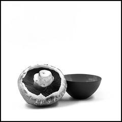 Mushroom [the white series IV] (K.Pihl) Tags: ilfordfp4125 hasselblad500cm schwarzweiss blackwhite analog minimalism pellicolaanalogica rodinal125 bw film stilleben sonnar150mmf40