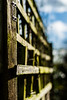 Thought I'd join in with Fence Friday 😊 (EYeardley) Tags: fence fencefriday fencedfriday hff bokeh shallowdof dof depth nikon nikon50mm 50mm nikonphotography sunshine garden mygarden outoffocus green gardenfence bluesky