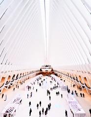 Oculus, NY (christopherswan56) Tags: oculus newyork new york city worldtradecenter architecture