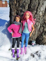 Best Friends (flores272) Tags: skipper skipperdoll barbiefairies barbie barbieclothing barbiedoll snow winter outdoors toy toys doll dolls