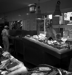 """At The Fish Market"" (giannipaoloziliani) Tags: windows flickr photooftheday liguria lightandshadow pescheria downtown pescefresco pesce capture italy italia genova genoa sale capturestreets fishmarket market shop ice fish blackandwhite biancoenero nikon nikonphotography nikoncamera"