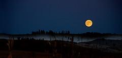 Sorge la luna dal monte (gianclaudio.curia) Tags: nikon digitale d7000 luna controluce collina notturno natura 18105 naturebynikon