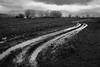 Water road (GiòPhotos ( GioviTheVet )) Tags: rain pioggia inverno winter bw land campagna giovithevet
