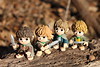Hobbits Really Are Amazing Creatures! (Doctor Beef) Tags: funko mysteryminis lordoftherings thefellowshipofthering toy collectible minifigure minifigures frodobaggins samwisegamgee peregrintook merriadocbrandybuck hobbits