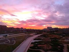 One day... (Jotha Garcia) Tags: amanecer sunrisecolors sunrise oneday madriz madrid puente huaweip8 huawei jothagacia parque park 2018 febrero february invierno winter