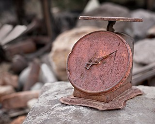 Rusted Scale 5507 E