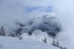 dans les nuages (bulbocode909) Tags: valais suisse champexlac montagnes nature hiver neige arbres nuages brouillard stratus bleu groupenuagesetciel