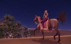 Arabian Nights (SunTvilling) Tags: secondlife waterhorse bento maitreya exile valentina jinx arabian thepaintedpony