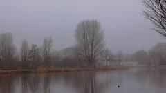 Blue Monday (tribsa2) Tags: nederlandvandaag mist amsterdam