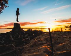 I is bird man (ashercurri) Tags: bird fly jump beach sand sun sunset outdoors landscape orange sony a7ii goose creek state park north carolina