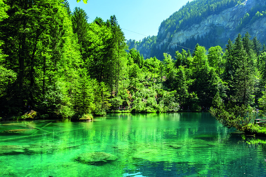 blausee schweiz calm water thom o tags ifttt 500px trees switzerland mountains nature wetter
