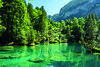 Calm water (Thom O.) Tags: ifttt 500px trees switzerland mountains water nature beautiful vivid colorful natur schweiz blausee