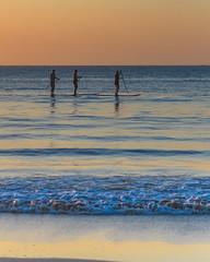 Sunrise Seascape and Paddleboarders