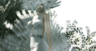 LOTD 85: Feathers (new releases & gifts)