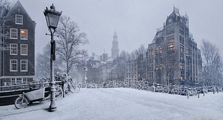 The world has turned white in Amsterdam