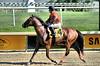 "2017-06-30 (34) r8 Forest G. Boyce on #4 Amnicaloia (JLeeFleenor) Tags: jockey جُوكِي jinete dżokej jocheu คนขี่ม้าแข่ง jóquei žokej kilparatsastaja rennreiter fantino 기수"" жокей jokey người horses thoroughbreds equestrian cheval cavalo cavallo cavall caballo pferd paard perd hevonen hest hestur cal kon konj beygir capall ceffyl cuddy yarraman faras alogo soos kuda uma pfeerd koin حصان кон 马 häst άλογο סוס घोड़ा 馬 koń лошадь photos photography md maryland marylandhorseracing marylandracing forestgboyce outside outdoors"